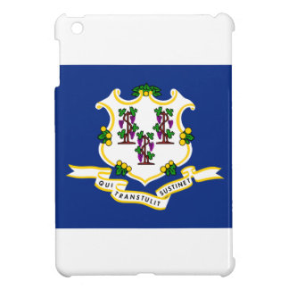 Connecticut State Flag iPad Mini Cases