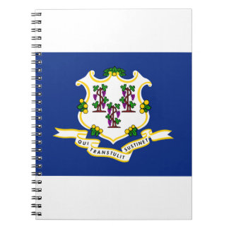 Connecticut State Flag Notebooks