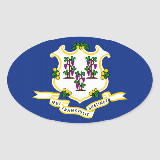 Connecticut State Flag.png Oval Sticker