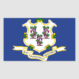 Connecticut State flag Rectangular Sticker