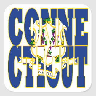 Connecticut state flag text square stickers