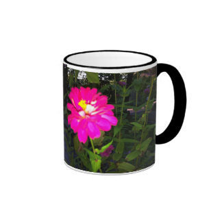 connecticut wildflower mugs