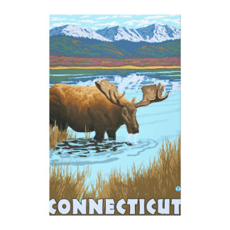 ConnecticutMoose Drinking in Lake Canvas Print