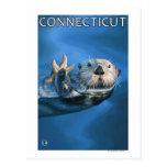 ConnecticutSea Otter Scene Postcard