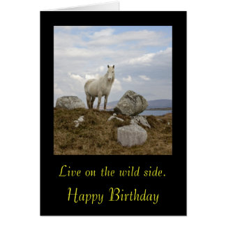 Connemara Pony, Live on the wild side. , Happy ... Card