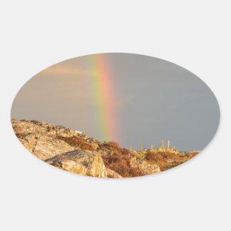 Connemara Rainbow Oval Sticker