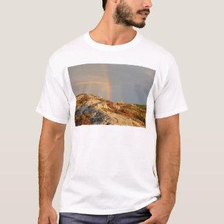 Connemara Rainbow T-Shirt
