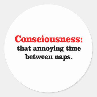Consciousness Round Sticker