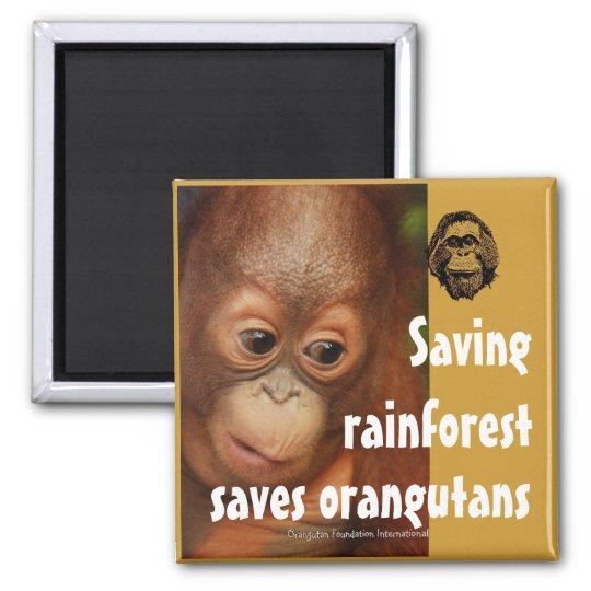 Conservation Magnet