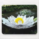 Conservatory Pond Lily Mouse Pads