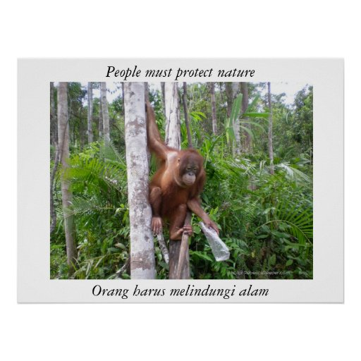 Conserve Nature Wildlife Poster