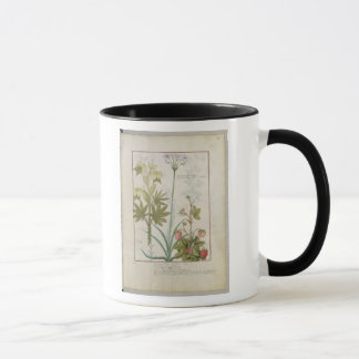 Consiligo, Burreed and Strawberry Mug