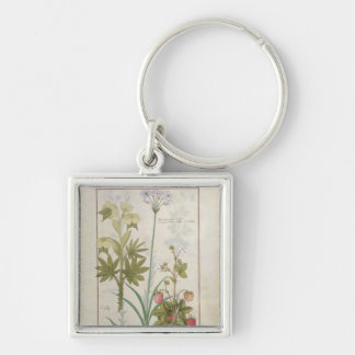 Consiligo, Burreed and Strawberry Silver-Colored Square Key Ring