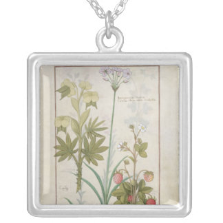 Consiligo, Burreed and Strawberry Silver Plated Necklace