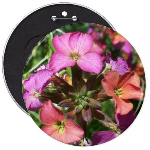 'Constant Cheer' Wallflower Button or Badge