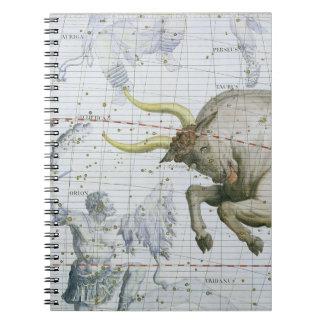 Constellation of Taurus, plate 2 from 'Atlas Coele Notebooks