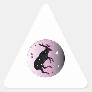 Constellation Triangle Sticker