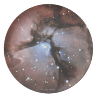 Constellations Plate