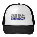 Consultant During The Day