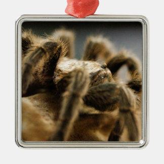 Contemplative Spider - Tarantula Art Image 8 Christmas Ornament