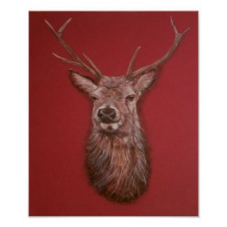 Contemporary Highland Red Deer Stag Poster