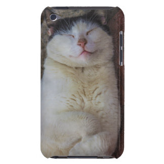 Content Cat Sleeping on Her Back iPod Touch Covers