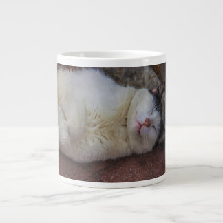 Content Cat Sleeping on Her Back Jumbo Mug