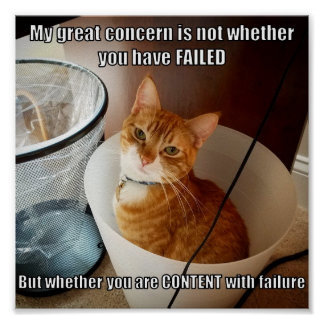 Content with failure poster