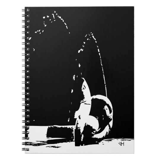 Contrast Fountain Notebooks