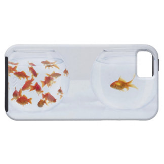 Contrast of  many goldfish in fishbowl and iPhone 5 case