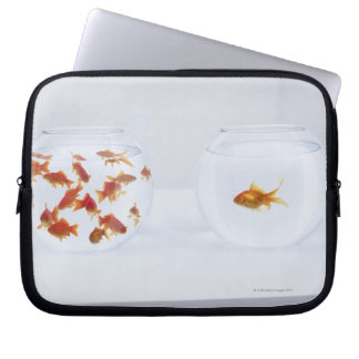 Contrast of  many goldfish in fishbowl and laptop sleeve
