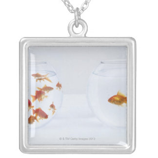 Contrast of  many goldfish in fishbowl and silver plated necklace