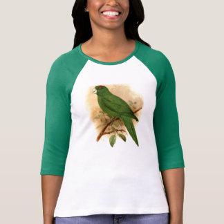 Conurus Labati Ladies 3/4 Sleeve Raglan (Fitted) T-shirt