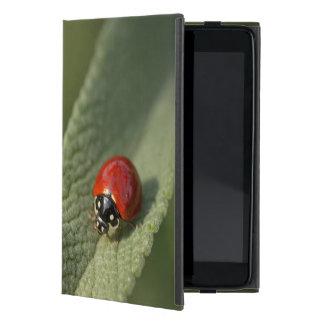 Convergent ladybird beetle on Cleveland sage iPad Mini Cover