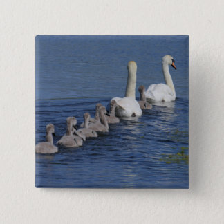 Convoy of Swans 15 Cm Square Badge