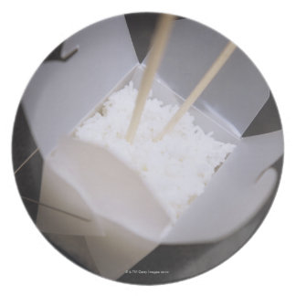 Cooked Rice in a To-go Container Plate