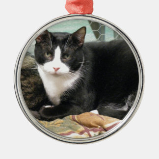 Cookie Christmas Ornament