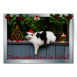 Cookie Loving Cat Cards