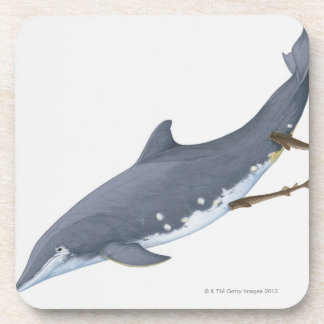 Cookiecutter Sharks Beverage Coasters