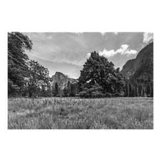 Cooks Meadow View of Half Dome (Black & White) Photo