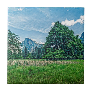 Cook's Meadow View of Half Dome Ceramic Tiles