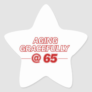 cool 65 years old gifts star sticker