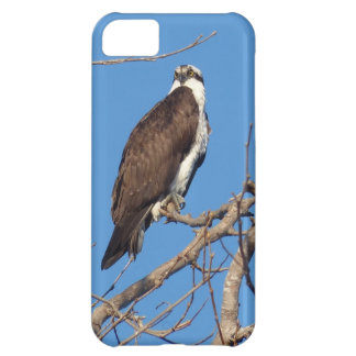 Cool and manly bird of prey 5C iphone case