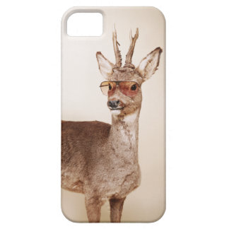 Cool animals in sunglasses. case for the iPhone 5
