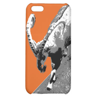Cool aries iphone case iPhone 5C cover