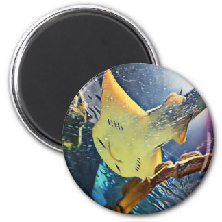 Cool Artistic Underside of Stingray 6 Cm Round Magnet