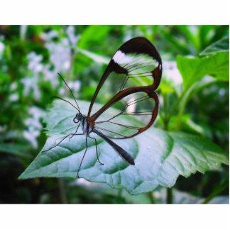 cool as glass photo sculpture decoration
