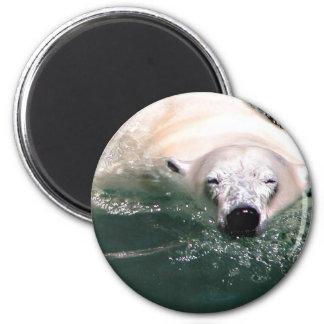 Cool Bear 6 Cm Round Magnet