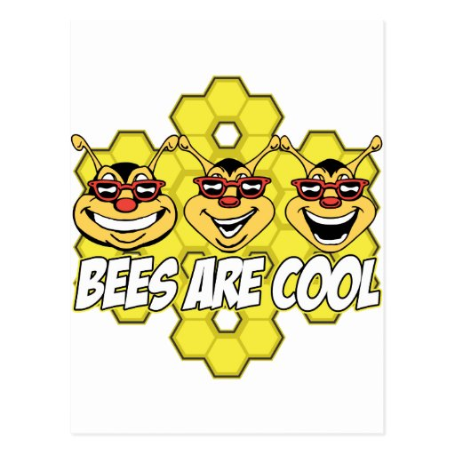 Cool Bees Post Card