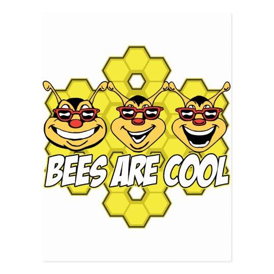 Cool Bees Postcard